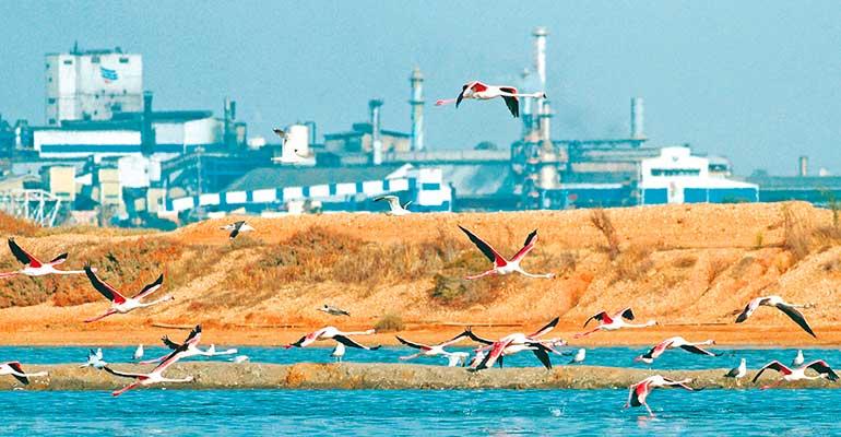 La Junta de Andalucía declara estratégico un proyecto de economía circular de Atlantic Copper